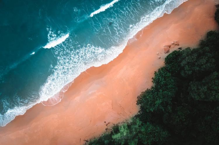 «Хорошенькая малышка» с пляжа вызвала умиление у приморцев