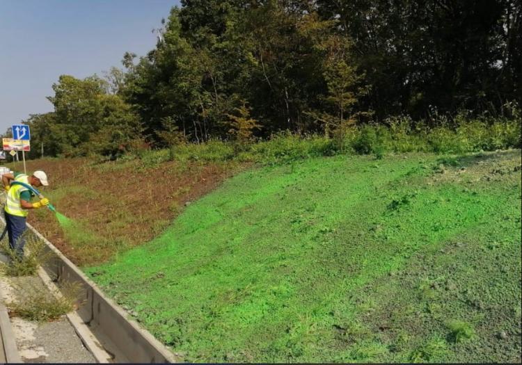 Во Владивостоке засаживают газоны с применением технологии гидропосева