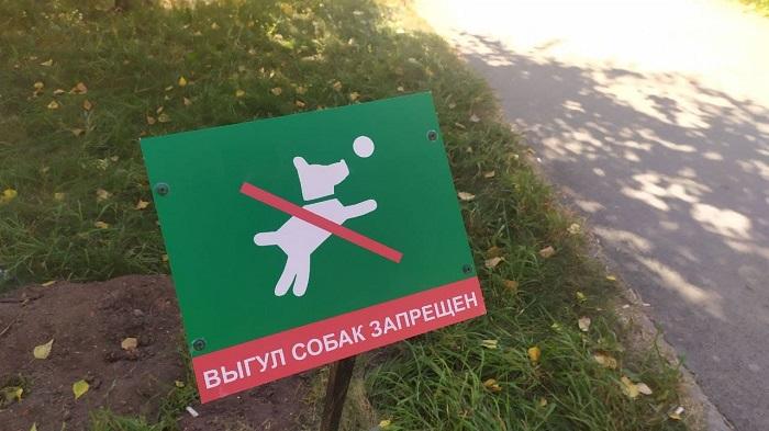 Служба-112 стала принимать звонки о бродячих собаках в Новосибирской области