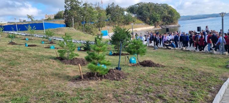 «Таких мероприятий должно быть много»: участники ВЭФ высадили деревья