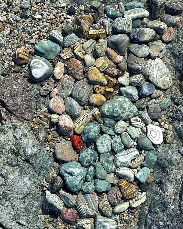 «Впервые такую красоту вижу»: творение природы удивило приморцев