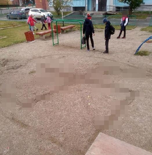 Огромную свастику вытоптали дети на Чистой Слободе