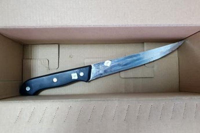 Убийцу с кухонным ножом отдали под суд в Новосибирске