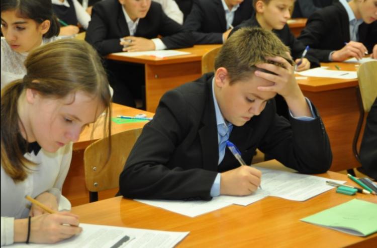 Школьники Владивостока пройдут международное тестирование